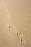 Fußjobsteps im glatten, beige Sand Lizenzfreies Stockfoto