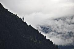 Fukta den skogsbevuxna bergkanten i de österrikiska fjällängarna silhouetted mot mist, och moln med ett som sticker fram, sörjer  Royaltyfri Bild