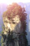 Fukta stenberget på zhangjiajie royaltyfri bild