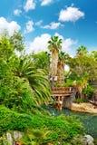 Fuktig tropisk djungel Arkivbilder