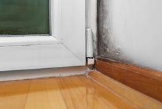 Fuktighet och form - problem i ett hus royaltyfri fotografi