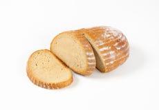 Fuktigt kontinentalt bröd royaltyfri bild