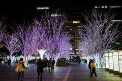 Fukuoka el 21 de marzo de 2016 La gente está tomando la imagen de la decoración ligera de los días de fiesta en la estación de Ha Imagenes de archivo