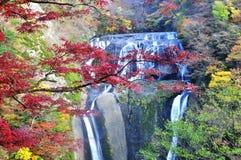 Fukuroda Waterfall. A scenery of Fukuroda waterfall during autumn Royalty Free Stock Image