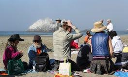 Fukushima está aquí protesta Imágenes de archivo libres de regalías