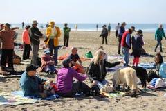 Fukushima est ici protestation Images libres de droits
