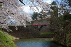 FUKUSHIMA, JAPÃO - ABRIL 15,2016: Castelo de Tsuruga cercado pelo hund Foto de Stock