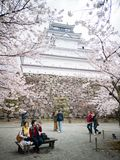 Fukushima Japan-April 16, 2018: Tsuruga slott eller Aizuwakamats Arkivfoto
