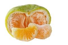 Ful grapefrukt Arkivbilder