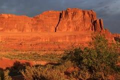 Fulgor da manhã nas rochas vermelhas em Zion National Park fotografia de stock royalty free
