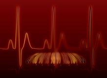 Fulgor da pulsação do coração morno Fotografia de Stock