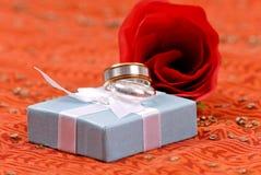 fullödigt bröllop för bandsilver Fotografering för Bildbyråer