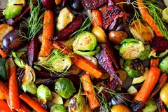 Full background of roasted autumn vegetables. Full background of roasted colorful autumn vegetables, above view Stock Images