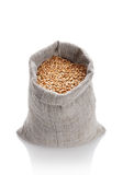Full bag with a wheat Royalty Free Stock Photo