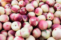 A full basket of Peaches stock image