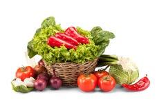 Full basket of ripe vegetables Stock Images