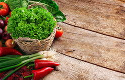 Full basket of ripe vegetables Stock Images
