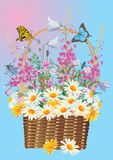 Full basket of wild flowers Royalty Free Stock Photography