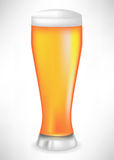 Full beer glass Stock Photos