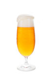 Full beer glass with foam. Stock Photography