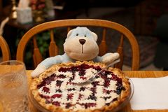Full Berry Pie Ready to Eat by a Toy Monkey for a Meal Royalty Free Stock Images