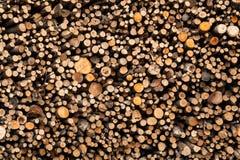 Full bild av den klippta wood högen, textur Arkivfoto