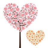Full bloom sakura heart tree Royalty Free Stock Images