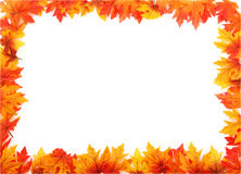 Full Boarder Of Leaves. Full Boarder Created With Fall Leaves Stock Photo