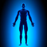 Full Body - Front View - Blue Concept Royalty Free Stock Image