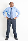 Full body mature Indian man executive. Portrait of full body mature Indian business man hands on waist looking to side, standing on plain background royalty free stock photo