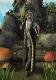A fairytale full body portrait of an old magician with a grey beard. royalty free stock photos