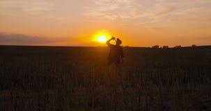Full bonde som dricker alkohol på fält under solnedgång arkivfilmer