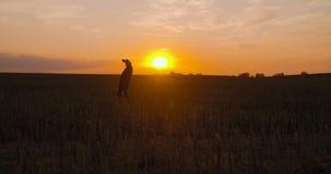 Full bonde som dricker alkohol på fält under solnedgång stock video
