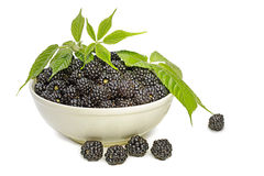 Full bowl of blackberries. Decorated with foliage Royalty Free Stock Images