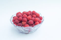 Full bowl of delicious raspberry Stock Images