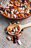 Full bowl of different haricot beans Royalty Free Stock Photography
