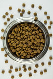 Full Bowl of Dogfood Royalty Free Stock Image