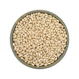 Full bowl of organic navy beans on a white background Stock Image
