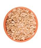 Full bowl of peeled sunflower seeds isolated on white Stock Photography
