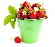 Full bucket of strawberry Royalty Free Stock Photo