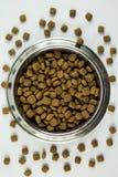 Full bunke av Dogfood Royaltyfri Bild