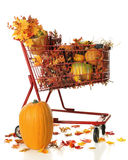 Full Cart of Fall Color Royalty Free Stock Photos