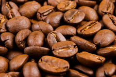Full of coffee bean Stock Photo