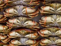 Full Crabs on Ice selling at Market Stock Images