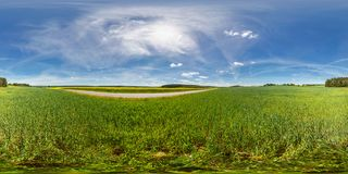Full 360 degree seamless panorama in equirectangular spherical equidistant projection. Panorama in a field near a road with royalty free stock photo