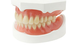 Full Denture Royalty Free Stock Images