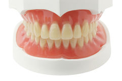 Full Denture Stock Photos