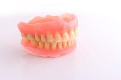 Full denture on white background Stock Image