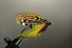 Full-dress klassische Lachse fliegen Stockfotos