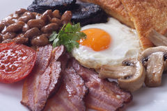 Full english breakfast. With fried egg, bacon, mushrooms, sausage and black pudding Royalty Free Stock Image